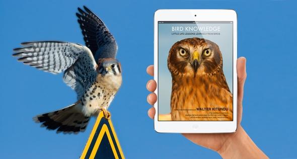 Bird_Knowledge